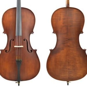 Enrico 4/4 Size Student Plus II Cello Ou