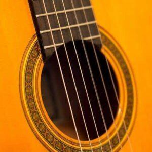 Steel String Acoustic Guitars