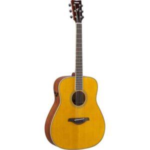 Transacoustic Guitars